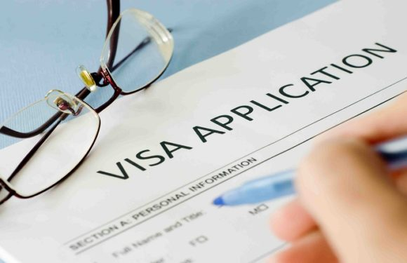 Why do different visas take different lengths of time to process?